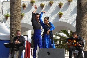 flamenco-1924139_640